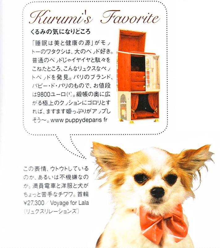 puppy-dans-Harper's-Bazaar-Japan-Kurumi's-Favorite-copie